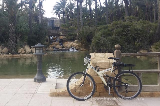 Велосипедныемаршруты Аликанте Пальмераль
