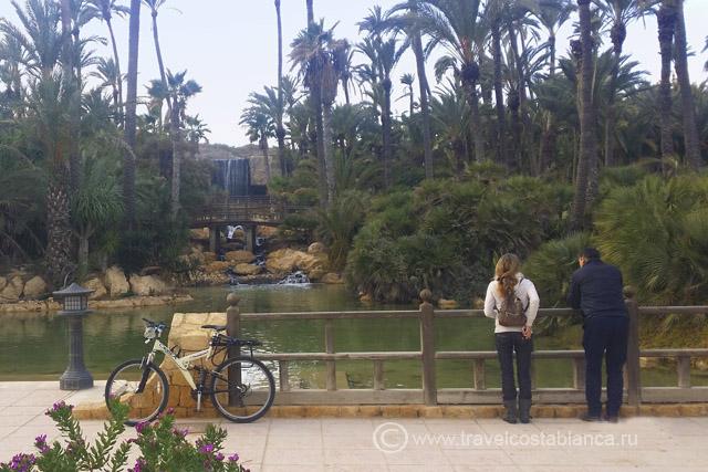 Аликанте на велосипеде Пальмераль
