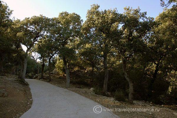 Природный парк Фонт Роха