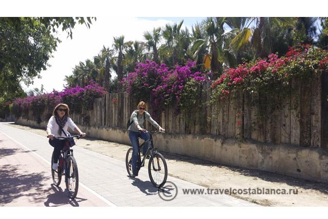 экскурсии на побережье Коста Бланка. Велопрогулка