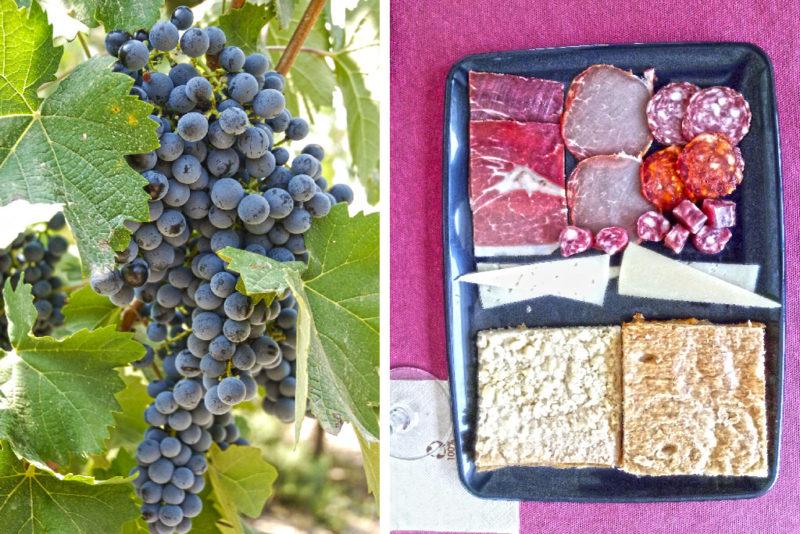 дегустация на винодельне Фаело - виноград и закуски
