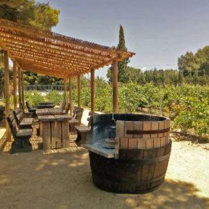 Винодельни Испании бодега Фаэло