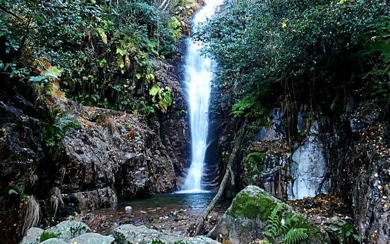 Толедо-Национальный парк Кабеньерос