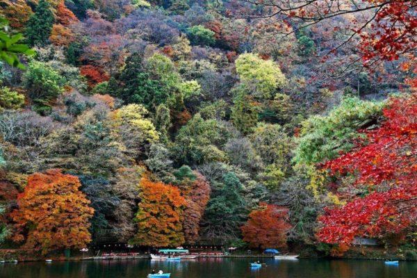 Топ-10 национальных парков Испании