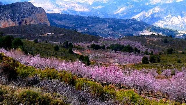 горы испании фото