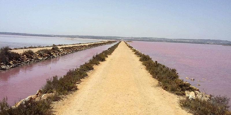 Розовое озеро Торревьеха на велосипеде фото